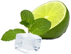 Limette und Minze - Zutaten für Mojito