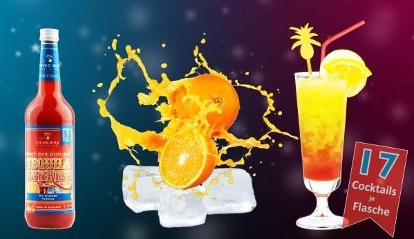 Einfache Cocktails selber machen. Premix nur mit Saft & Eis mischen. Flasche ergibt 17 Cocktails