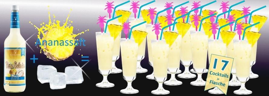 Pina Colada Cocktail zum selber machen. Flasche Premix plus Ananassaft plus Eis ergibt 17 Cocktails.
