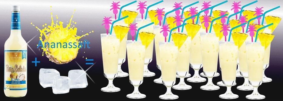 17 fertige Cocktails Pina Colada je Flasche - jetzt online kaufen